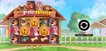 CountMontecryptos Dog House Screenshot