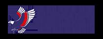 GreySnowPoker Logo