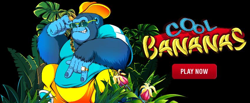 Cool Bananas Banner