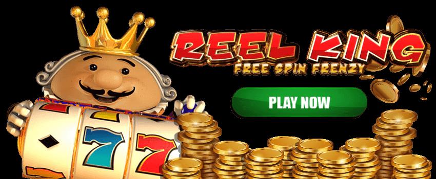Reel King Banner