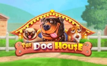 Dog House Image 1