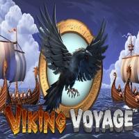 Viking Voyage Image