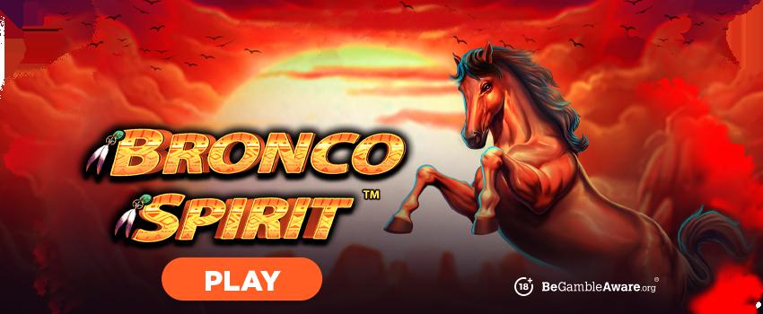 Bronco Spirit Banner