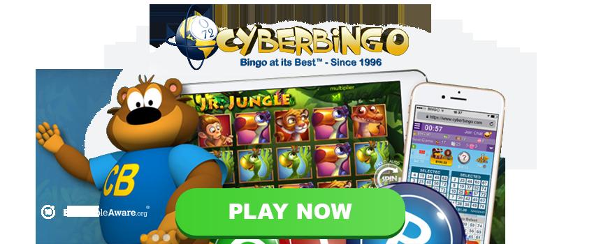 Cyber Bingo Banner