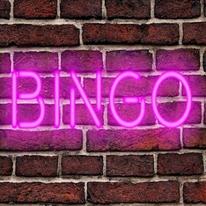 How Online Bingo NZ Has Become a Social Hit