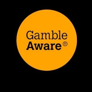 New GambleAware Online Casino Survey Findings