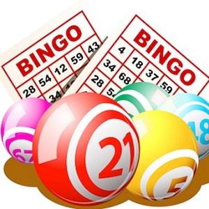 Top Online Bingo Tips for New Zealand