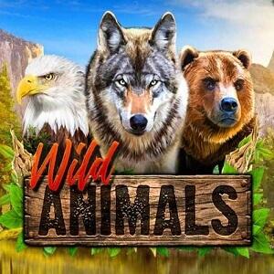 New Red Rake Gaming Wild Animals Pokie