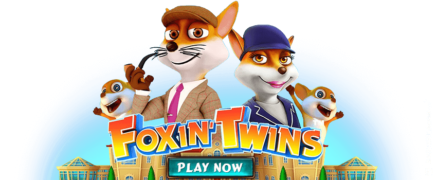 Foxin Twins Banner