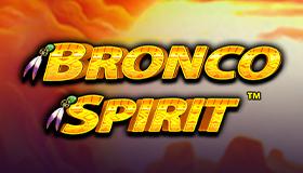 Bronco Spirit Image